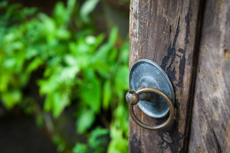 Handle with a ring on the old gate in the garden and yard on green background Stock Photo