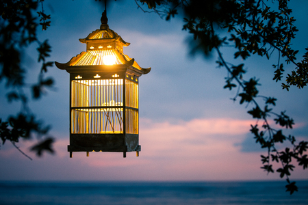 Lanterns hanging from the trees to decorate at sunset - made of wood: cage Lamp bird