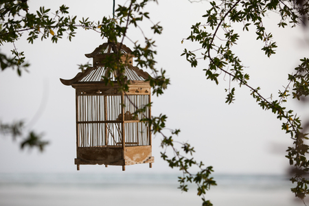 brightness: Lanterns hanging from the trees to decorate at sunset - made of wood: cage Lamp bird