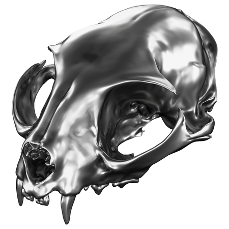 3D render of metallic Cat Skull isolated on white background