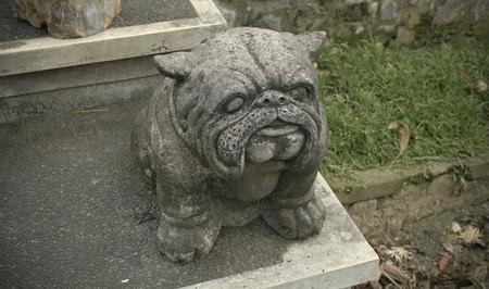 Cute and funny Bulldog sculpture. Statue guardian dog