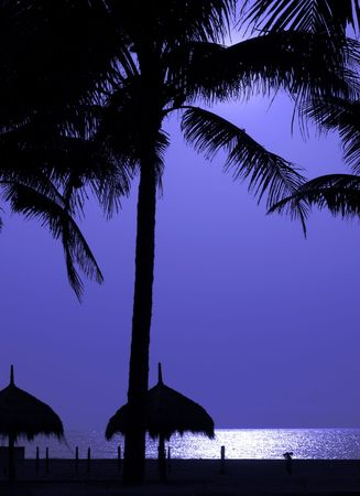 Moonlit Beach -- with palm trees and straw covered sun roofs photo