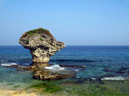 pristine corals: The famous Vase Coral Rock on the island of Liuchiu off the west coast of Taiwan