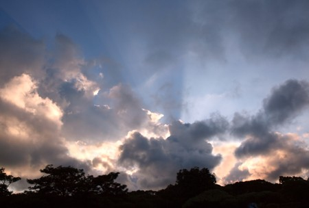 towering: The sun rays shine behind towering clouds and silhouettes of trees
