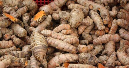 curcumin: Fresh turmeric rhizomes for sale at a farmer market