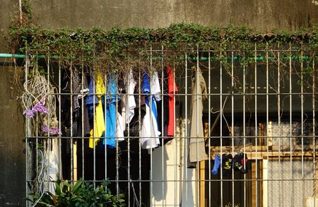 fenced in: On an overgrown balcony fenced in with iron bars hangs laundry to dry   Stock Photo