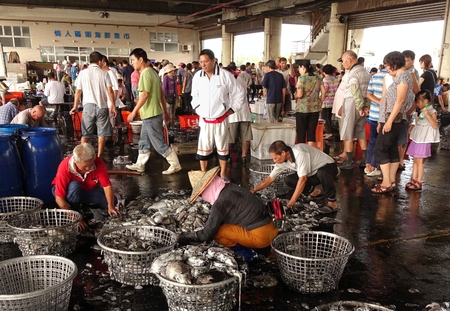 KAOHSIUNG, TAIWAN -- SEPTEMBER 28, 2014: Workers at the Sinda fishing port sort fresh squid into baskets to be sold at the daily market.