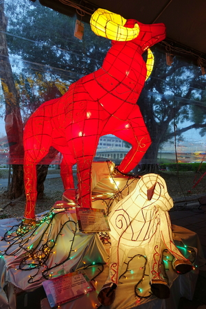 colorful lantern: KAOHSIUNG, TAIWAN -- MARCH 6, 2015: Colorful lantern to celebrate the Chinese year of the goat are on display along the banks of the Love River during the traditional Lantern Festival.