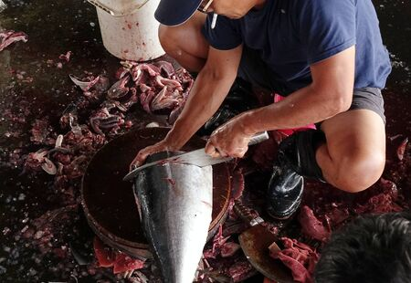 fishmonger: KAOHSIUNG, TAIWAN -- MAY 9, 2015: A local fishmonger cleans and slices a large tuna fish at the Sinda fishmarket. Editorial