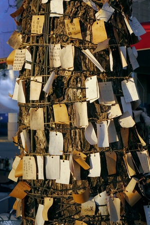 desires: KAOHSIUNG, TAIWAN -- FEBRUARY 13, 2016: A wishing tree where people can put up pieces of paper on which they write their hopes, desires and prayers. Editorial
