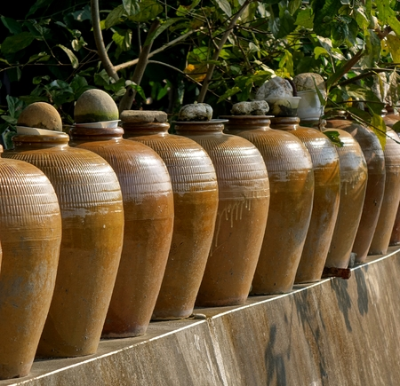 pickling: A row of large pickling jars on a garden wall