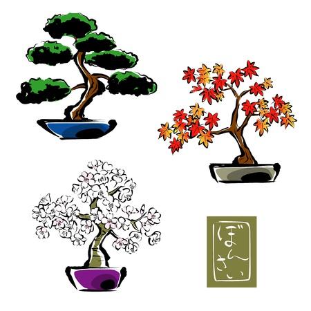 BONSAI,  pinetree, Japanese maple, sakura  Stock Illustratie