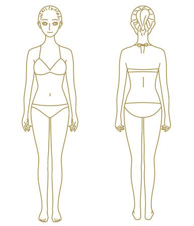 女性の体、モデル