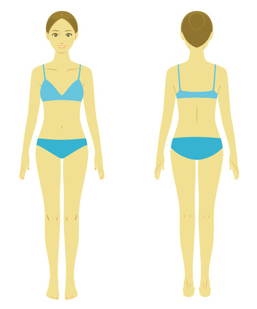 女性体モデル  イラスト・ベクター素材