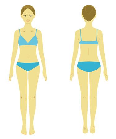 Modelo do corpo Mulher Ilustra��o