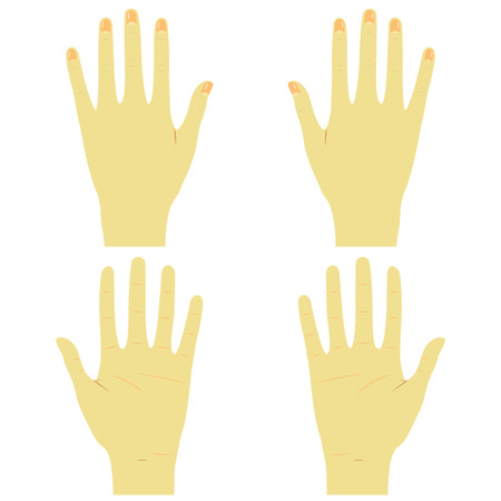 Hands front and back right and left