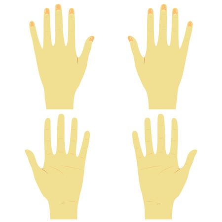Handen voor en achter rechts en links