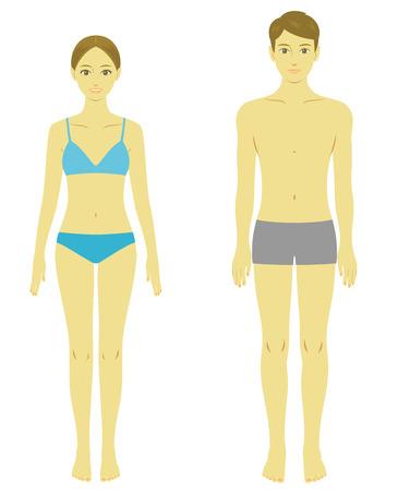 nude boy: Frau und Mann Körpermodell Illustration