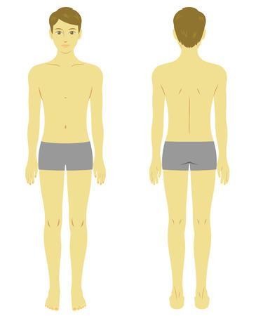 Man body model