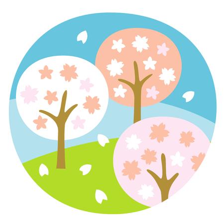 Cherry trees, full bloom, in April, illustration 写真素材