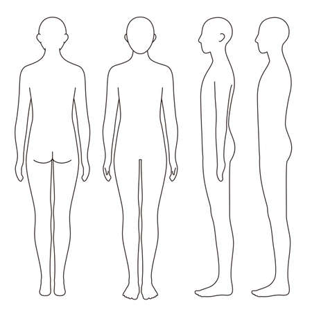 Body Outline Front and Rear Side Posture Vector File