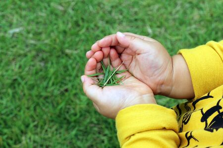 important: The hands of children