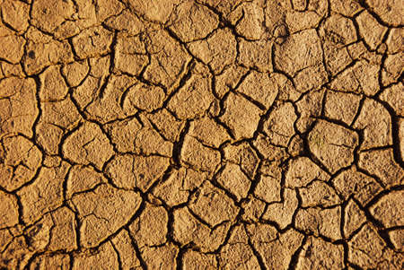 Dry weathered desert soil background with pattern of cracks photo
