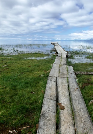 Old wooden pier on the swampy lake photo