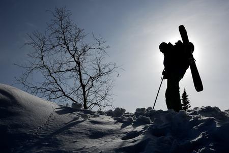 arri�re-pays: Silhouette de l'arri�re-pays skieur debout pr�s de l'arbre dans la lumi�re du soir