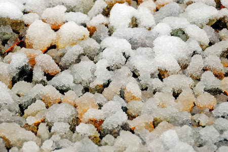 Gravel covering with wet snow. Natural  background. photo