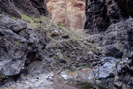 Hiking in Gorge Masca. Volcanic island. Mountains of the island of Tenerife, Canary Island 版權商用圖片