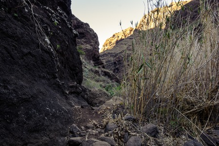 Hiking in Gorge Masca. Volcanic island. Mountains of the island of Tenerife, Canary Island, Spain. Фото со стока
