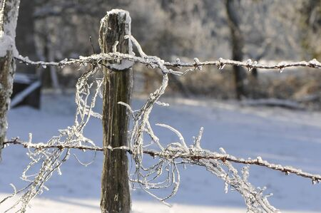 Old barbed wire with lot of ice and snow photo