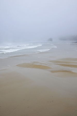 wavelet: Beach and some rocks under the rain with a misty weather