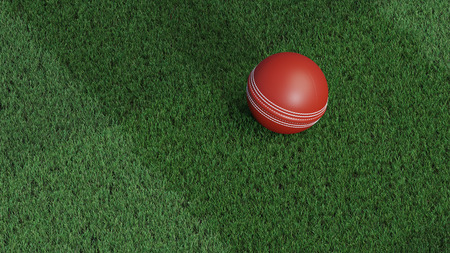 Up view of a Cricket ball put on a very well-cut lawn Фото со стока