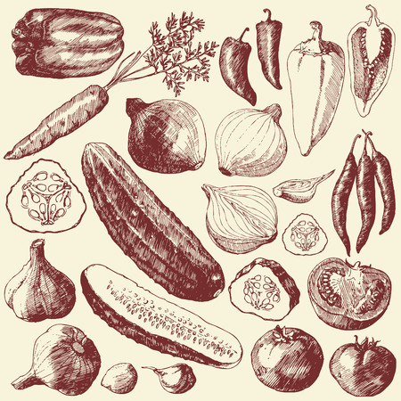 represents: Art-illustration that represents the hand drawn image of vegetables Illustration