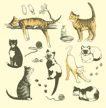 lazy: ilustraci�n que representa el conjunto de dibujado a mano los gatos.
