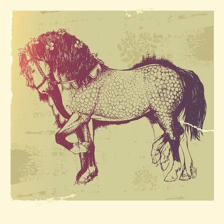 thoroughbred horse: Ilustraci�n vectorial de la mano-tirados por caballos andaluces. Vectores