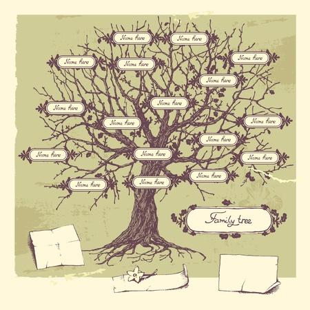 fa: Vektoros illusztráció a családfáját. Oak kézzel rajzolt fa.