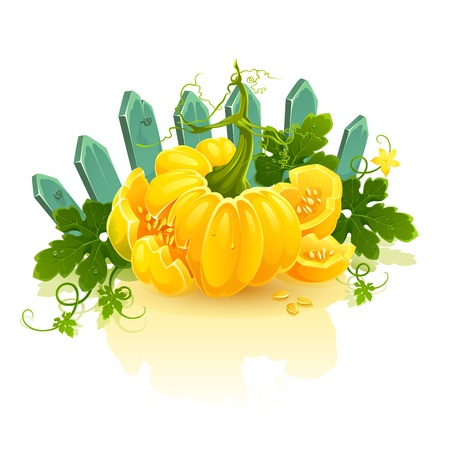 clip art illustration of broken golden pumpkin isolated on white background. Vector