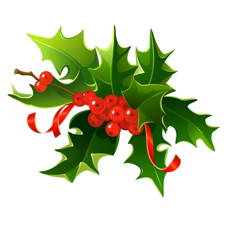 Christmas mistletoe bouquet with berries and ribbons. Vector