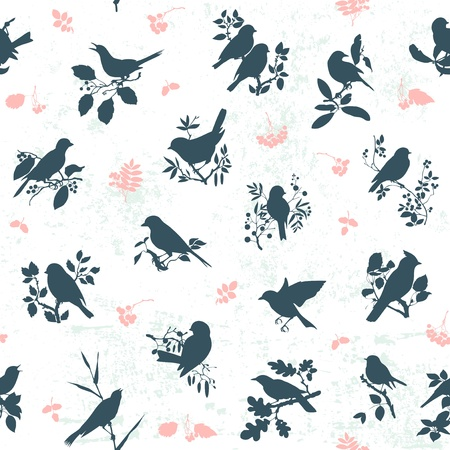robin bird: Seamless pattern background with songbirds silhouettes Illustration