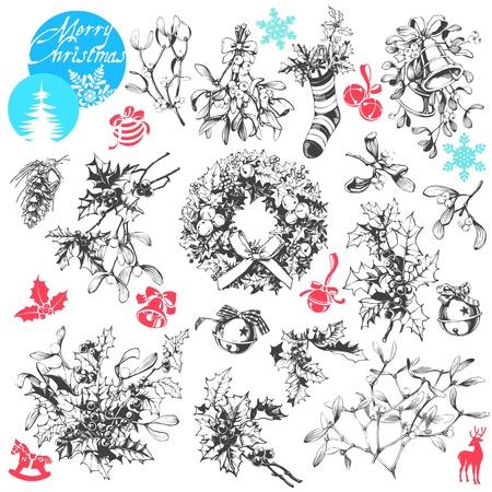 fir cone: Vector Clip Art Collection de las famosas plantas de Navidad - mu�rdago y el acebo