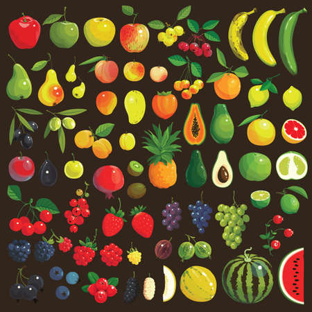 Great collection of the clip art fruits and berries Vector