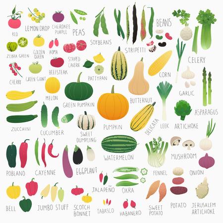 tabasco: Clip art food collection Vol.2: vegetables