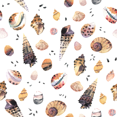 sea shell: Watercolour seamless pattern with sea shells
