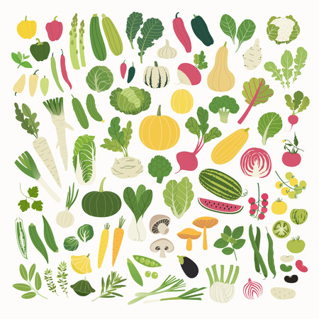 rhubarb: Great clip art collection of various vegetables and herbs Illustration