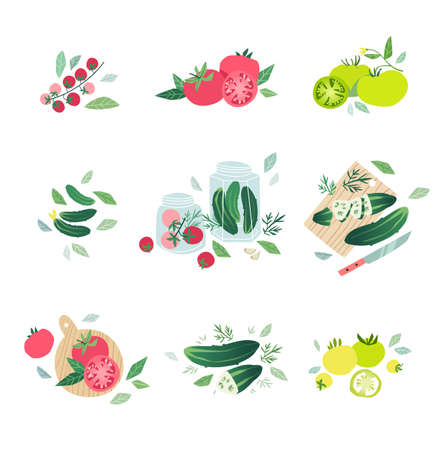 cherry tomato: Mini sets with various kind of tomatoes and fresh green cucumbers