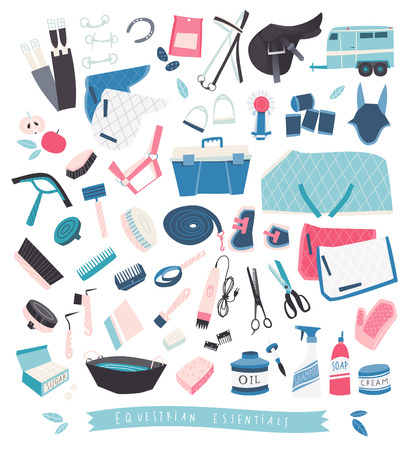 tack: Illustrative set of equestrian essentials,  grooming tools and care products