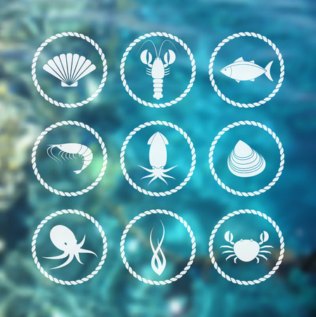 seafood: Collection of white seafood icons in flat style on blur background Illustration